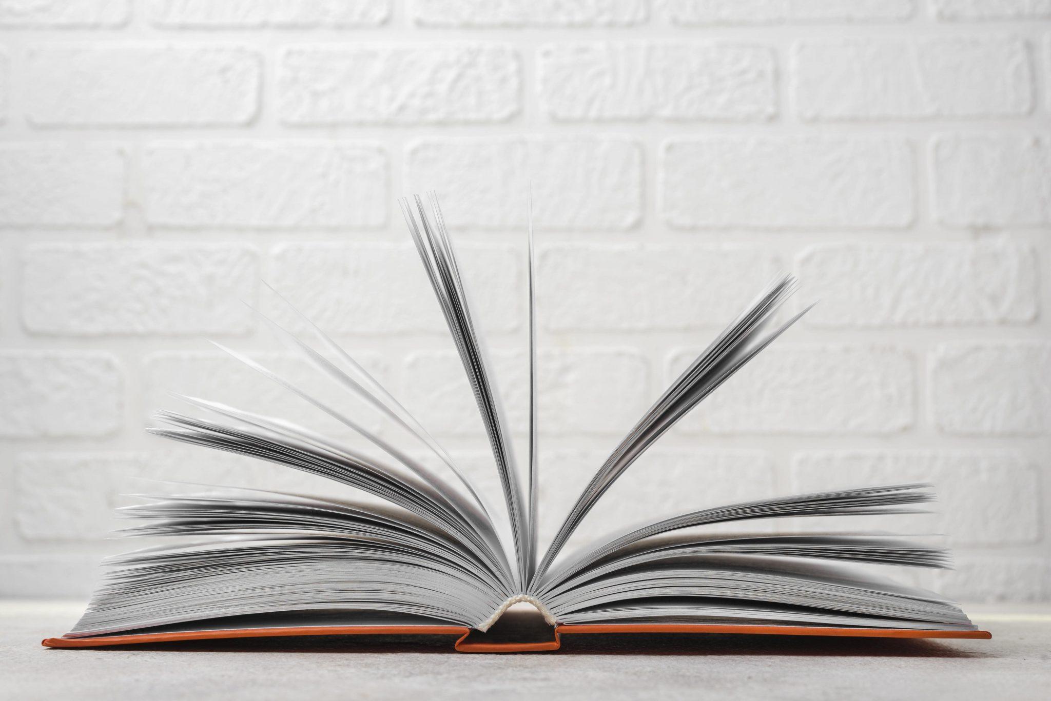 Diferencia entre sitio web y página web - Analogía con un libro